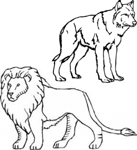 Advanced Skaters - Lion and Wolf